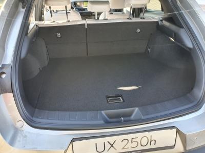 Lexus UX 250h 2WD Prestiege